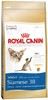 Royal Canin Для Сиамских кошек: 1-10 лет (Siamese 38)